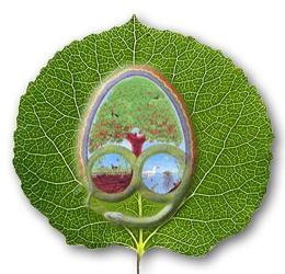Logo Permacultuur Nederland